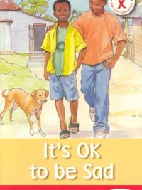 HIV AIDS Action Reader: Its OK to be Sad